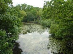 8 Underground Rivers | Mental Floss