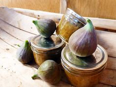 ... Figs, Picked Figs, Fig Jam Recipe, Preserves Handmade, Fig Tree, Fig