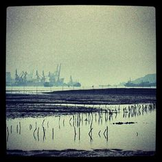 snapshots from nanning-based photographer XIAO FU /// NeochaEDGE ///