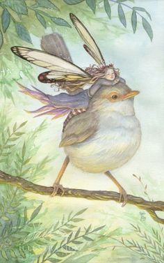 inspiration for girls' art project - combine sparrow watch and fairy love.