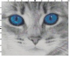 Cross Stitch Pattern Blue Eyed Kitty by theelegantstitchery, $15.00