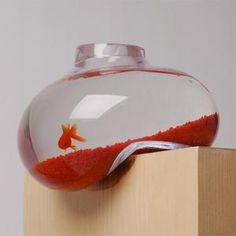Aquarium en équilibre -- Va-t-il tomber ? Faut-il le retenir ? On est jamais serein à 100% avec ce bocal à poissons rouges pour le moins original. C'est certe un peu cher pour impressioner ses potes, mais bon vous êtes ici pour vous ruiner !