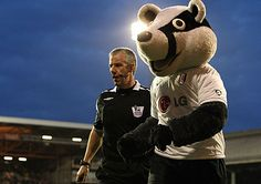 Billy the badger. Fulham FC