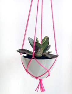 DIY: Pink Macrame Plant Hanger Remodelista (and skull tassels! Macrame Plant Hanger Patterns, Macrame Plant Holder, Diy Hanging Planter, Diy Planters, Hanging Basket, Hanging Pots, Hanging Succulents, Planter Ideas, Hanging Shelves