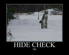 Oh hidden club.....