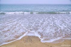 맑은 바다, 넉넉한 정이 있는 포항 화진리 마을