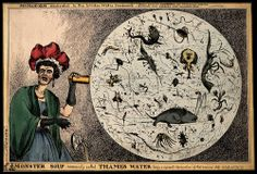 An etching by William Heath depicting a woman dropping her tea-cup in horror upon discovering the monstrous contents found in a magnified drop of Thames water. In the nineteenth century, sewage and waste contaminated the River Thames in London, making it a prime source of water-borne diseases such as cholera and typhoid.  From Wellcome Collection via Cabinet Magazine issue 44