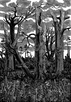 """Monica Poole (1921-2003) """"Spring 1988"""" wood engraving recording the devastation following the Great Storm, October 1987. Signed, titled. dated and numbered 3/100. 230 X 160 mm. Mounted, framed and glazed."""