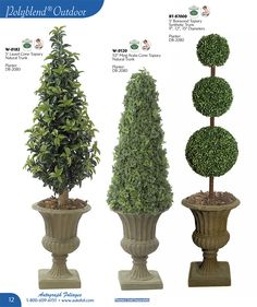 statement boxwood topiary and evergreen floral topiary wreaths pinterest garten. Black Bedroom Furniture Sets. Home Design Ideas
