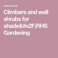 Climbers and wall shrubs for shade/RHS Gardening