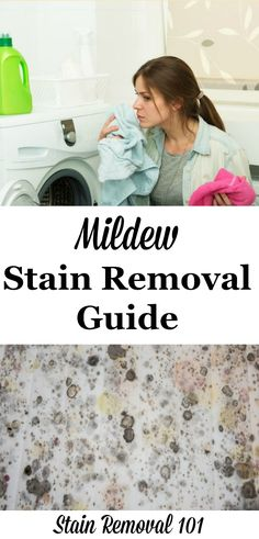 Mildew stain removal guide from clothes, upholstery, carpet and hard surfaces, on Stain Removal 101