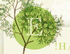 Appreciation, Behance, Easter, Profile, Graphic Design, Gallery, Creative, Check, User Profile