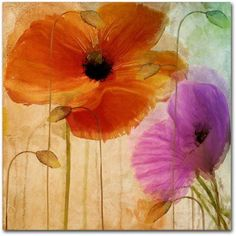 Trademark Fine Art Penchant For Poppies II Canvas Art by Color Bakery, Assorted