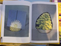 Ruth van Beek, The arrangement. Foto Andrea Gamst, from Offprint Paris