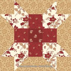 Farmer's Daughter Quilt Block 2017 Block of the Month by Nancy Zieman/Sewing With Nancy Big Block Quilts, Modern Quilt Blocks, Sampler Quilts, Scrappy Quilts, Amish Quilts, Star Quilt Patterns, Pattern Blocks, Quilting Ideas, Sewing With Nancy