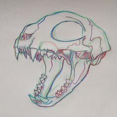 Tattoo Cat Skull Thighs 52 Ideas For 2019 Animal Sketches, Art Sketches, Art Drawings, Animal Skeletons, Animal Skulls, Animal Skull Drawing, Skull Reference, Skull Sketch, Skull Illustration