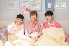 Wanna One I promise you Seongwoo Daniel Guanlin Produce 101, Kim Wo Bin, Bae, Park Bo Gum, Daniel Day, Guan Lin, Lai Guanlin, I Promise You, Ong Seongwoo