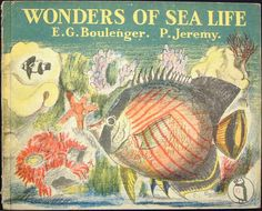 front cover of The Wonders of Sea Life, E. G. Boulenger, P. Jeremy, 1947, a Puffin Picture Book