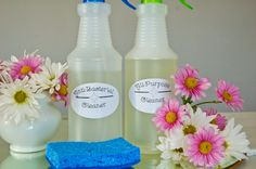 Kick the (Cleaner) Bucket: Clean Your Entire Home with Just Two Homemade Cleansers