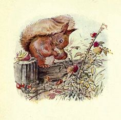 Beatrix Potter- he needs these read to him!