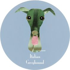 マイ @Behance プロジェクトを見る : 「006 | Italian Greyhound」 https://www.behance.net/gallery/42195299/006-Italian-Greyhound