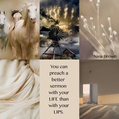 Preach by your life; Collages, Mood Colors, Beautiful Collage, Armor Of God, Prayer Room, Positive Quotes For Life, Close Up Pictures, Color Stories, Happy Weekend