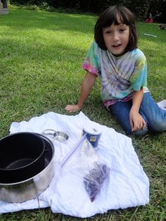 I discovered a bag of blueberries picked a few weeks ago in the fridge this morning. Rather than throw them away, we decided to do a little wildcrafting and cook up a batch of blueberry dye. supplies a bag of...