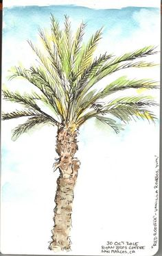 Doodlewash by Jennifer Stout Art Sketchbook, Follow Me On Instagram, Cactus Plants, Palm Trees, Watercolor Paintings, It Works, Around The Worlds, In This Moment, Sketchbooks