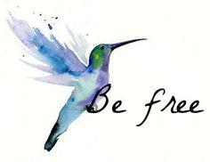 Hummingbird Quotes Related Keywords & Suggestions - Hummingbird ...