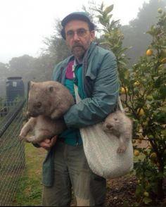 Przystojni doręczyciele wombatów