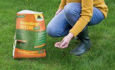 """Der """"RasenDünger Spezial 5PLUS1"""" von Neudorff ist ein organischer Rasendünger mit Eisenanteil"""