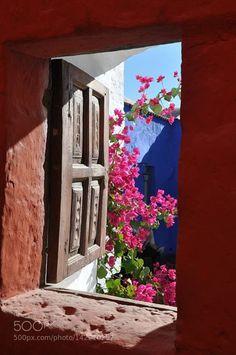 Santa Catalina Monastery Arequipa Peru http://ift.tt/21gGzoB ColorsTravelFlowersLightWindowArequipaPeruSanta Catalina Monastery