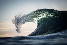 Power of the Ocean Photography by Warren Keelan (Australia) Sea Dragon