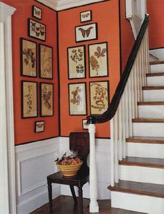 Orange Stairwell from MSL  Wainscoting, orange walls paint color, chair and botanical ...