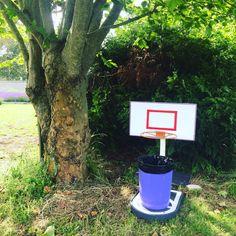 Come and aim your goal at Lavender Backyard Garden.😜😝😆#funstuff  #lavender  #lavenderfarm  #hamiltonnz  #newzealand