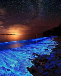 Magical Earth ~ Bioluminescent Dinoflagellate (noctiluca scintillans), at Jervis Bay, NSW, Australia Landscape Photography, Nature Photography, Photography Beach, Sea Of Stars, Image Nature, Fantasy Landscape, Nature Wallpaper, Galaxy Wallpaper, Nature Pictures