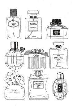 perfume illustrations / frida stenmark