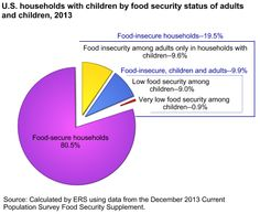 Food Security in the US - USDA ERS - Food Security in the U.S.: Key Statistics & Graphics Data. #foodinsecure #households Food Insecure Households - 19.5%  Food insecure, children and adults 9.9% #foodfacts #food #nutritionassistance #poverty  How Many People Lived in Food-Insecure Households?  In 2013:  49.1 million people lived in food-insecure households. 12.2 million adults lived in households with very low food security. 8.6 million children lived in food-insecure households in which…