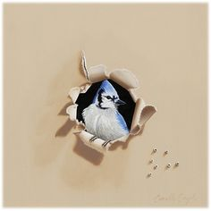 Bird Paintings /Trespasser Series - Blue Bandit by Camille Engel | contact the artist to order prints at camille-engel.com