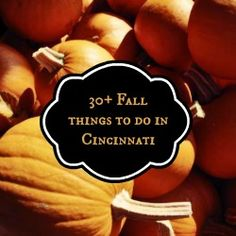 Fall Festivals and Halloween Things to do in Cincinnati