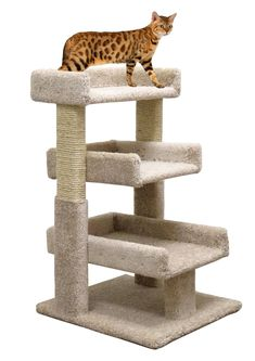 Cat Tree Small 33 inch Cat Furniture Wood and Scratcher, Beige Carpet *** Wonderful of you to have dropped by to see our picture. (This is an affiliate link) Cat Furniture, Furniture Ideas, Wood Cat, Cat Shelves, Sisal Rope, Beige Carpet, Scratching Post, Cat Health, Pet Beds