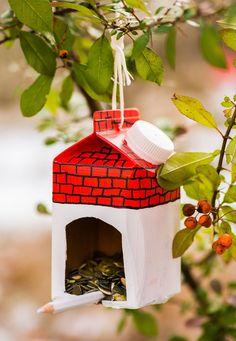 Vyrobte vtipná krmítka pro ptáčky: Ve tvaru muchomůrky i sovy! - Hobby