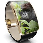 Corning Gorilla Glass SR is a tough scratch-resistant material for smartwatches and wearables