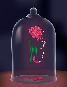 A Single Rose by SolitudeInterlude on DeviantArt