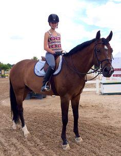 Neptune✨...what a cute horse!