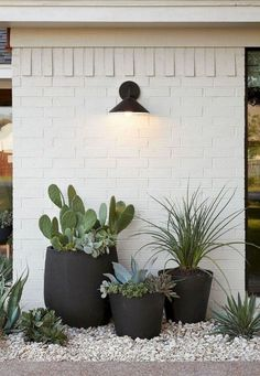 Low maintenance garden idea maintenance garden design 45 Easy And Low Maintenance Front Yard Landscaping Ideas - ZYHOMY Black Planters, Large Planters, Hanging Planters, Front Yard Planters, Outdoor Planters, Planters Around Pool, Outdoor Potted Plants, Front Yard Gardens, Front Door Plants