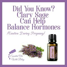 Clary Sage Can Help Balance Hormones. Essential Oil How To. Sage Essential Oil, Doterra Essential Oils, Clary Sage, Hormone Balancing, Natural Health, Aromatherapy, Bath And Body, Health And Wellness, Bubbles