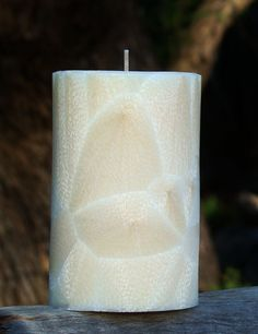 40hr SMOKED WOOD /& CEDAR Triple Scented Natural Pillar Candle FREE SHIPPING
