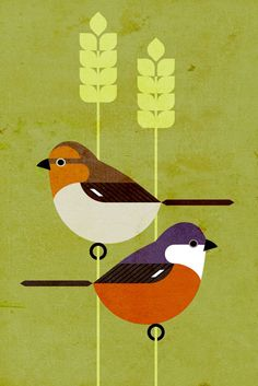 Scott Partridge - Illustration - Marsh Seedeater