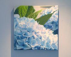Blue Hydrangea on Gallery Wrap Canvas